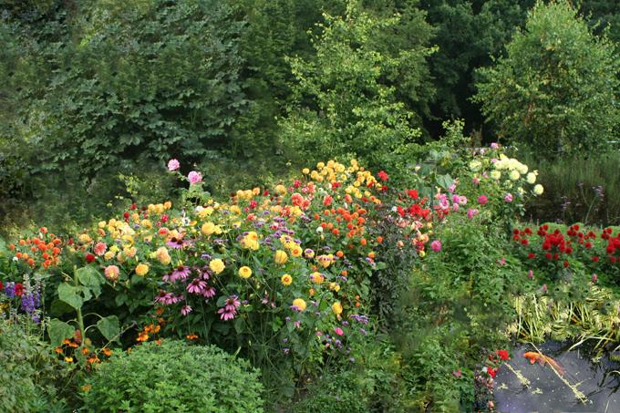 Garten Stauden mit schöne ideen für ihr wohnideen