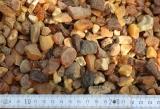 1000 Gramm baltische Rohbernsteine bis 2 Gramm / Stück
